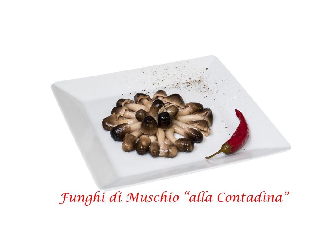 funghi di muschio