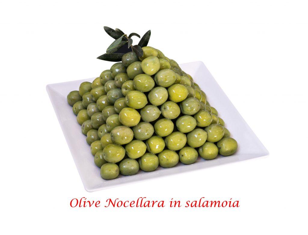 oliva nocellara